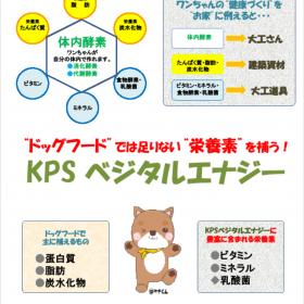 KPSベジタルエナジー 100g